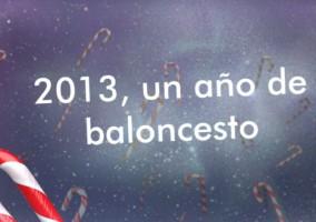 resumen año 2013