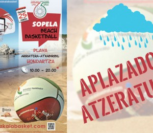 aplazado-beach-basket